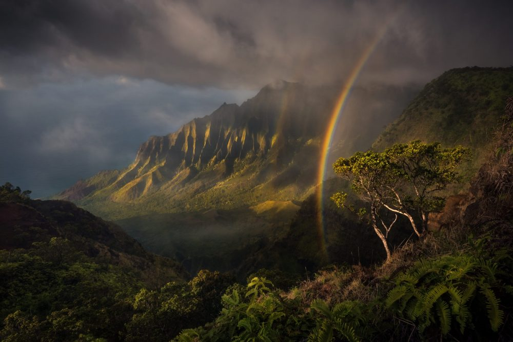 Jurassic Park Rainbow Hawaii Photo